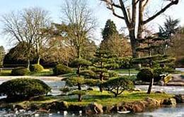 Singles in Düsseldorf - Japanischer Garten